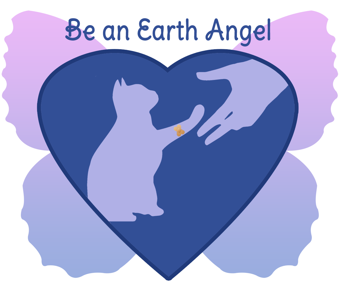 Floorplan Of A House Be An Earth Angel To Ffrc Friends Of Felines Rescue Center