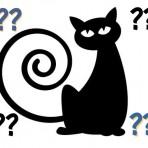 Name A Cat
