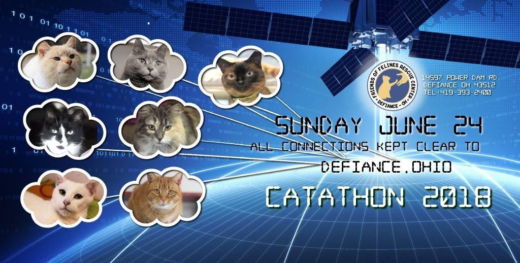 catathon