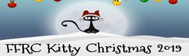 Kitty Christmas 2019